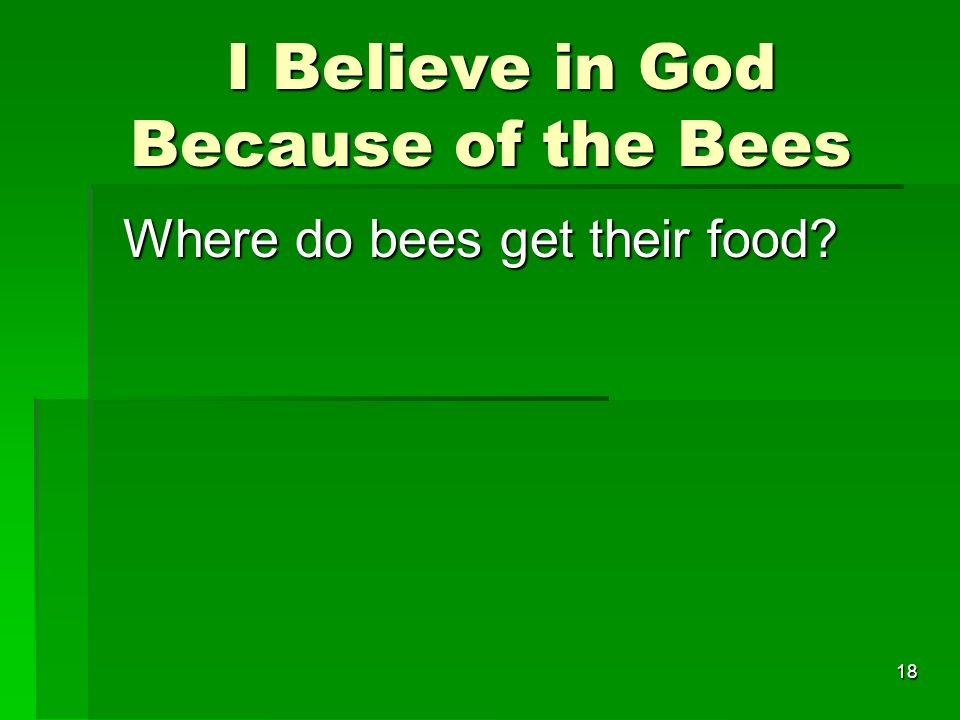 I Believe in God Because of the Bees I Believe in God Because of the Bees Where do bees get their food.