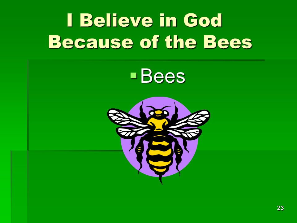 I Believe in God Because of the Bees I Believe in God Because of the Bees Bees Bees 23