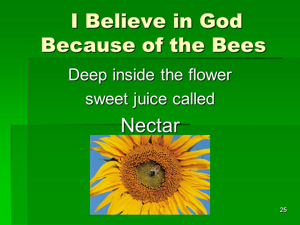 I Believe in God Because of the Bees I Believe in God Because of the Bees Deep inside the flower sweet juice called Nectar 25