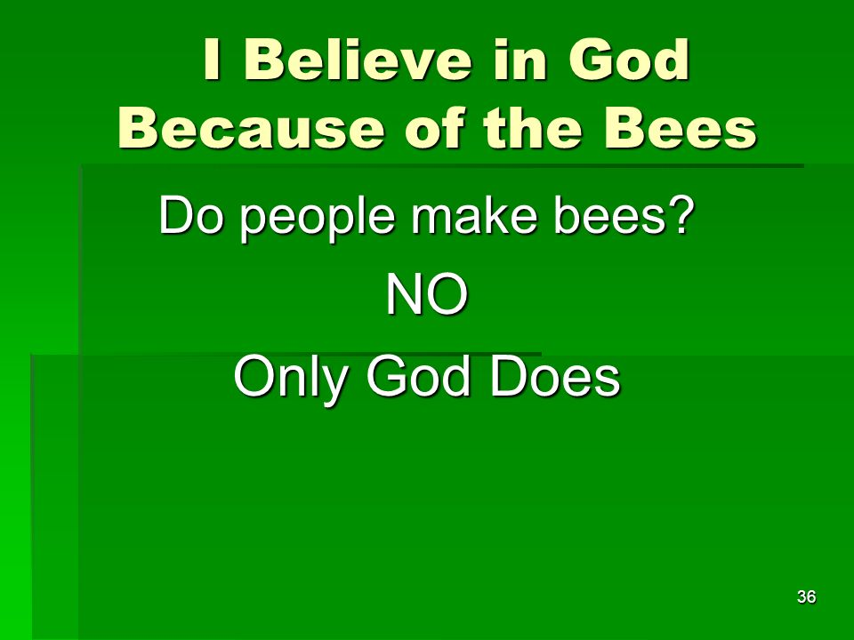 I Believe in God Because of the Bees I Believe in God Because of the Bees Do people make bees.