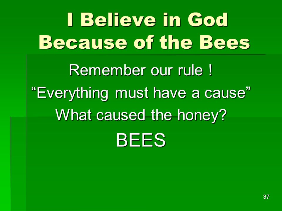I Believe in God Because of the Bees I Believe in God Because of the Bees Remember our rule .