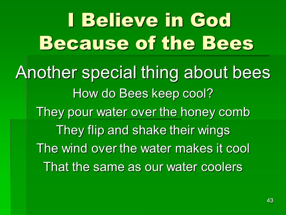 I Believe in God Because of the Bees I Believe in God Because of the Bees Another special thing about bees How do Bees keep cool.