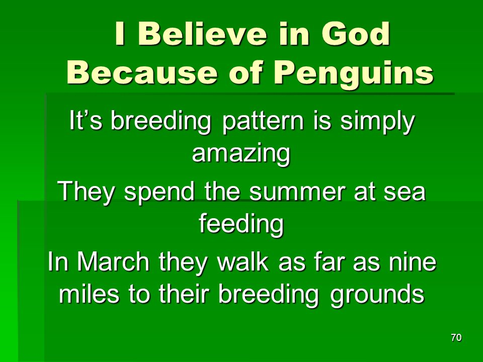 I Believe in God Because of Penguins I Believe in God Because of Penguins Its breeding pattern is simply amazing They spend the summer at sea feeding In March they walk as far as nine miles to their breeding grounds 70