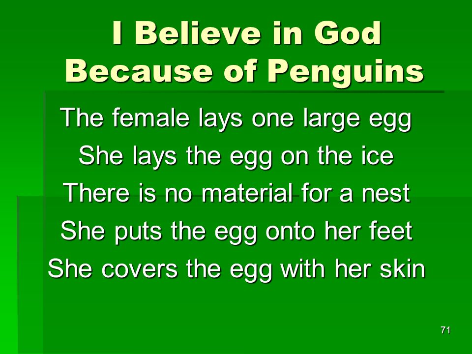 I Believe in God Because of Penguins I Believe in God Because of Penguins The female lays one large egg She lays the egg on the ice There is no material for a nest She puts the egg onto her feet She covers the egg with her skin 71