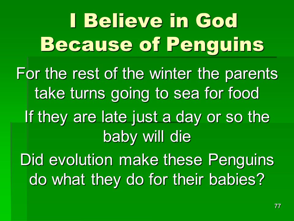 I Believe in God Because of Penguins I Believe in God Because of Penguins For the rest of the winter the parents take turns going to sea for food If they are late just a day or so the baby will die Did evolution make these Penguins do what they do for their babies.