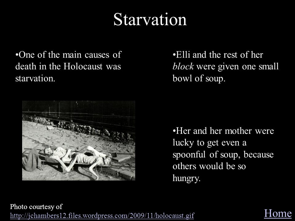 Starvation Home Photo courtesy of http://jchambers12.files.wordpress.com/2009/11/holocaust.gif http://jchambers12.files.wordpress.com/2009/11/holocaus