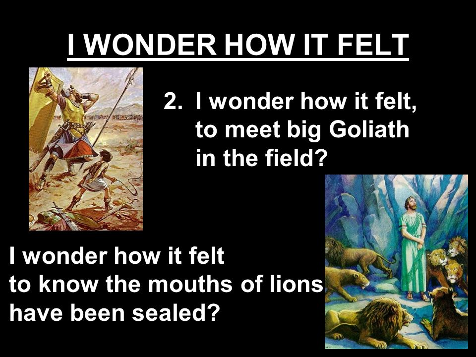 I wonder how it felt to know the mouths of lions have been sealed? 2.I wonder how it felt, to meet big Goliath in the field?