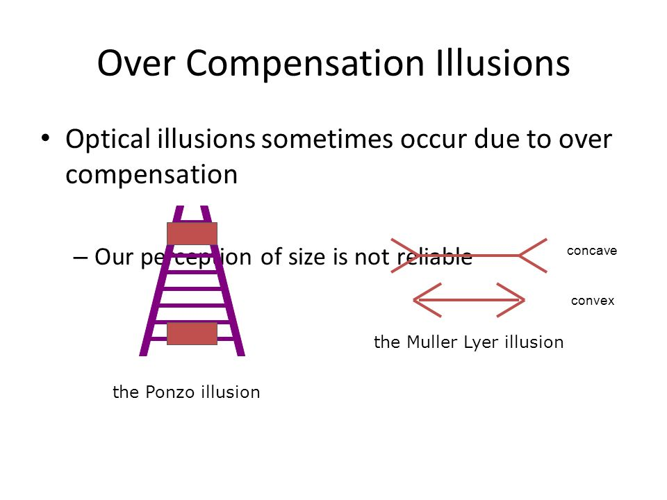Over Compensation Illusions Optical illusions sometimes occur due to over compensation – Our perception of size is not reliable the Muller Lyer illusi