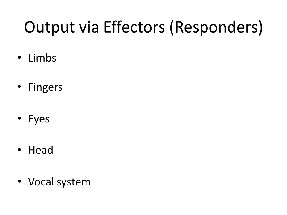 Output via Effectors (Responders) Limbs Fingers Eyes Head Vocal system