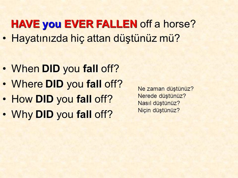 Hayatınızda hiç attan düştünüz mü. DIDfallWhen DID you fall off.