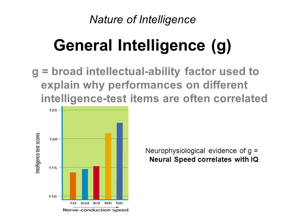 Nature of Intelligence General Intelligence (g) g = broad intellectual-ability factor used to explain why performances on different intelligence-test items are often correlated Neurophysiological evidence of g = Neural Speed correlates with IQ