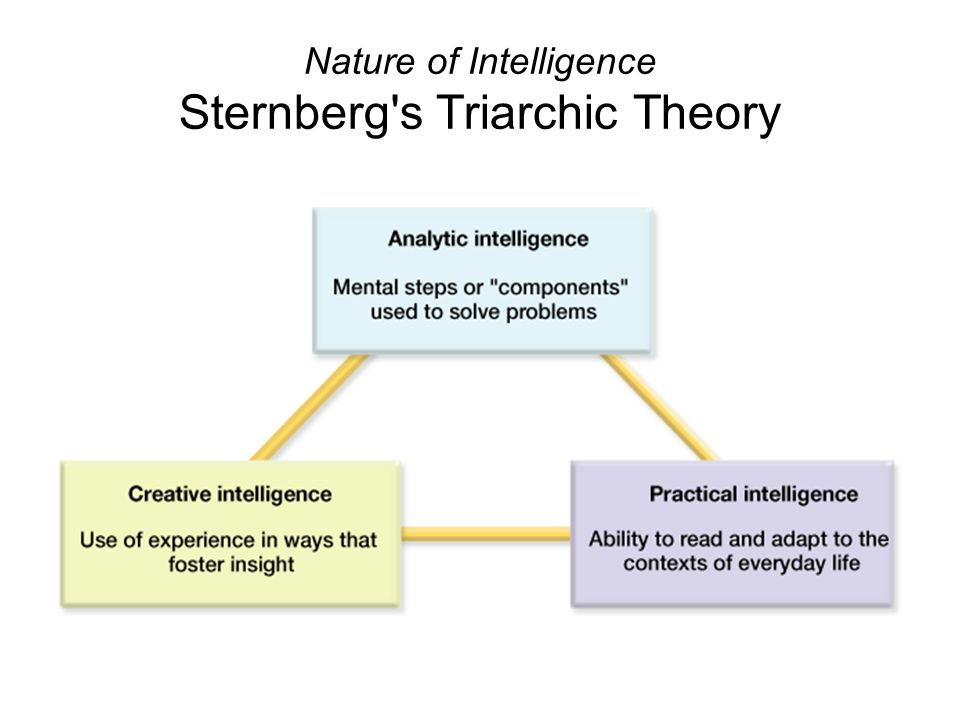 Nature of Intelligence Sternberg s Triarchic Theory