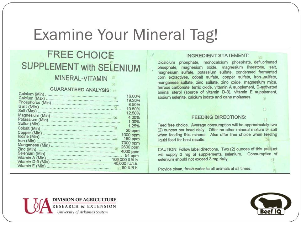 Examine Your Mineral Tag!