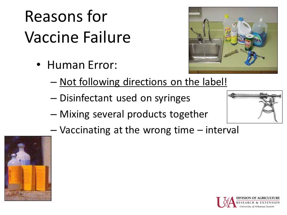 Reasons for Vaccine Failure Human Error: – Not following directions on the label.
