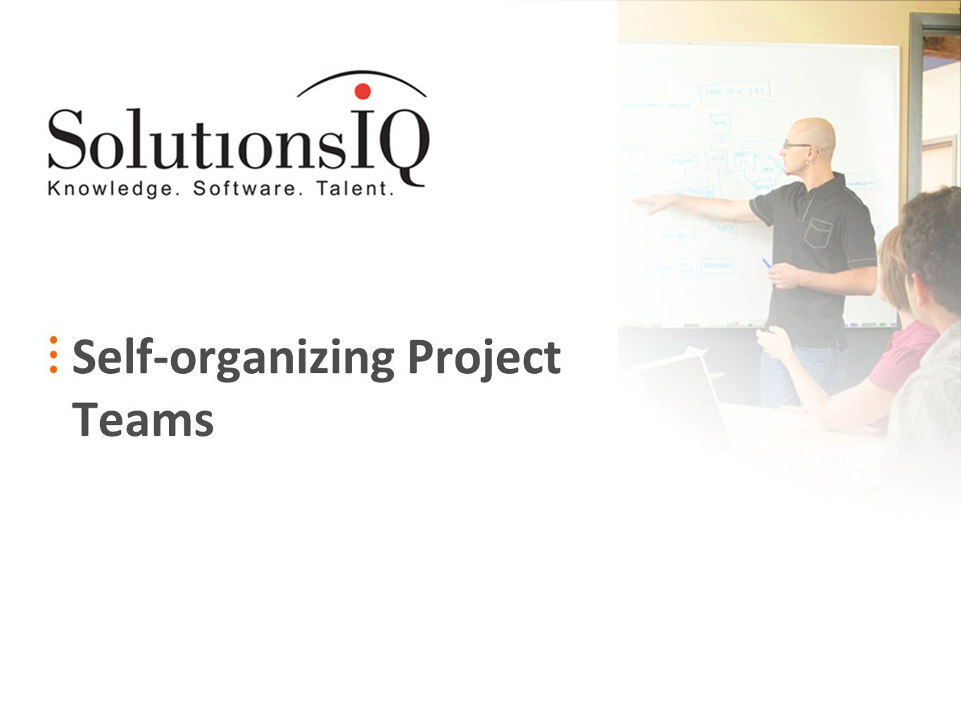Self-organizing Project Teams