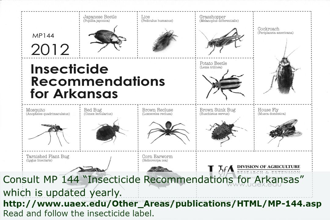 Consult MP 144 Insecticide Recommendations for Arkansas which is updated yearly. http://www.uaex.edu/Other_Areas/publications/HTML/MP-144.asp Read and