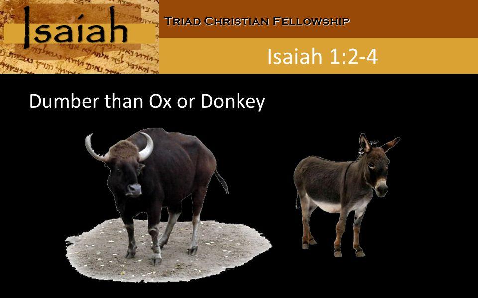 Triad Christian Fellowship Isaiah 1:2-4 Dumber than Ox or Donkey