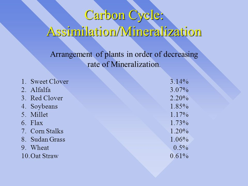 Carbon Cycle: Assimilation/Mineralization Arrangement of plants in order of decreasing rate of Mineralization. 1. Sweet Clover3.14% 2.Alfalfa3.07% 3.R