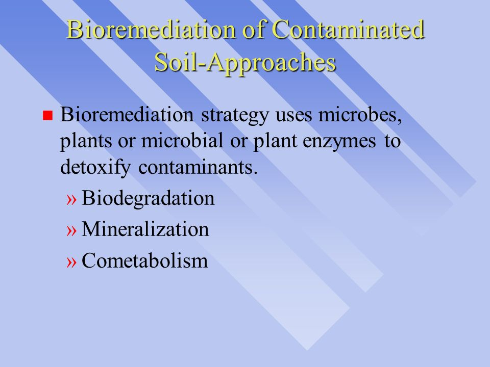 Bioremediation of Contaminated Soil-Approaches n Bioremediation strategy uses microbes, plants or microbial or plant enzymes to detoxify contaminants.