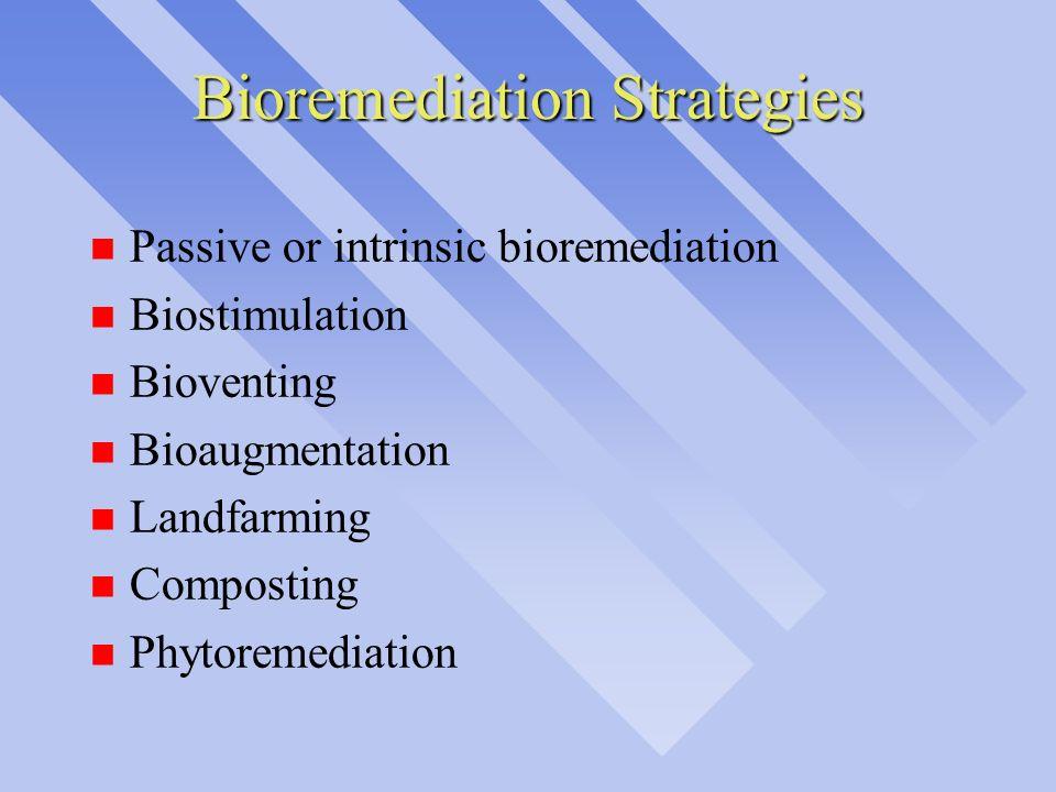 Bioremediation Strategies n Passive or intrinsic bioremediation n Biostimulation n Bioventing n Bioaugmentation n Landfarming n Composting n Phytoreme