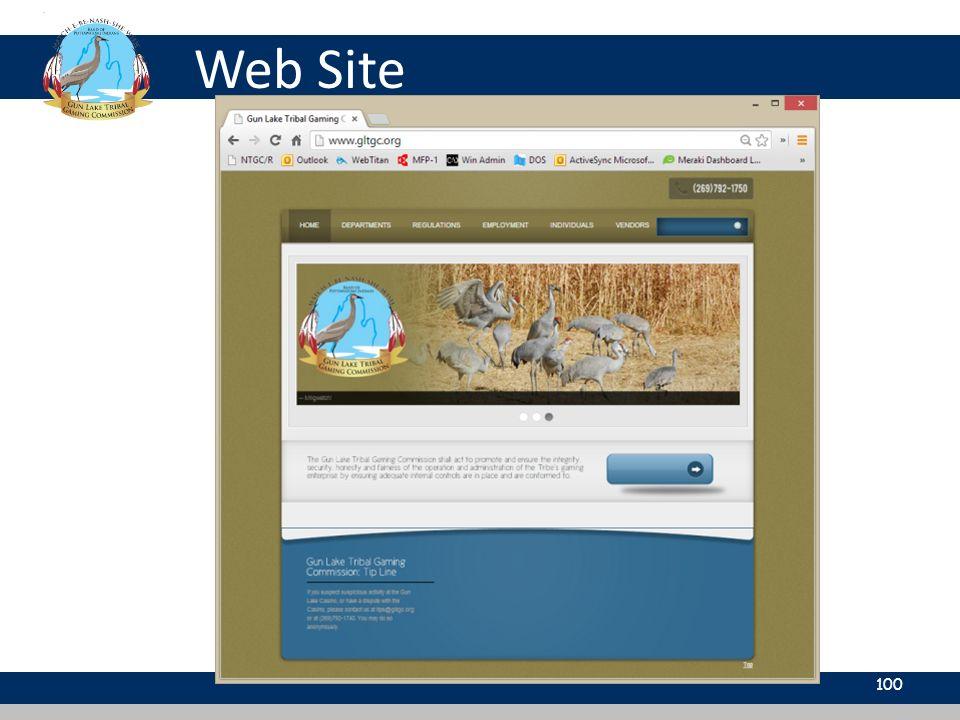 Web Site 100