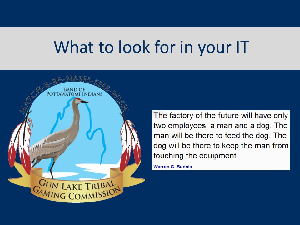 What to look for in your IT