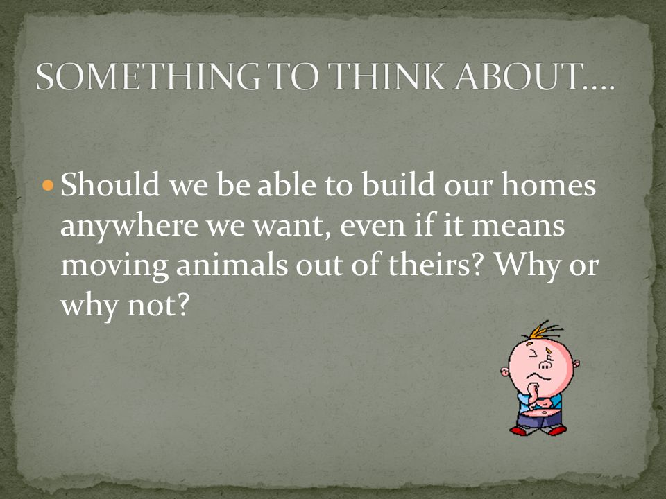 Should we be able to build our homes anywhere we want, even if it means moving animals out of theirs.