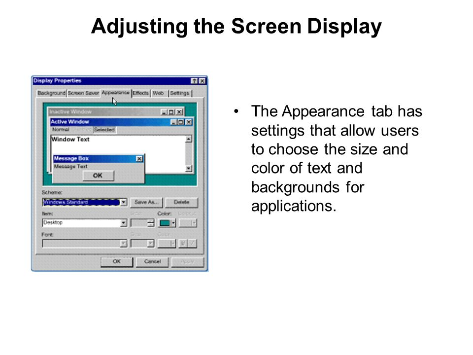 Adjusting the Screen Display The Appearance tab has settings that allow users to choose the size and color of text and backgrounds for applications.