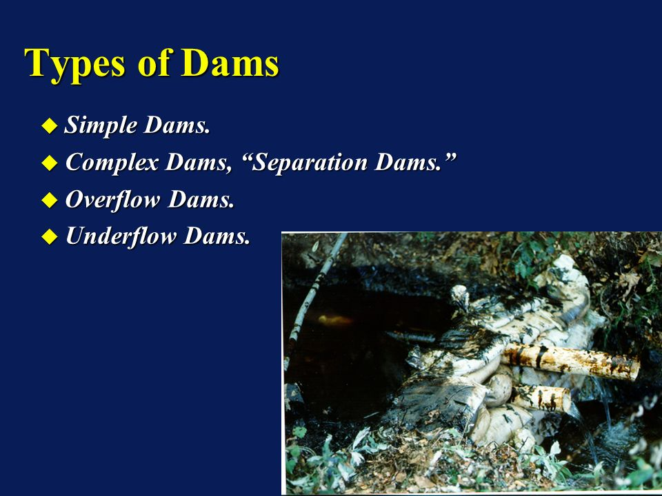 Simple Dams. Simple Dams. Complex Dams, Separation Dams. Complex Dams, Separation Dams. Overflow Dams. Overflow Dams. Underflow Dams. Underflow Dams.