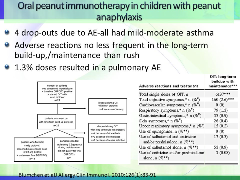 4 drop-outs due to AE-all had mild-moderate asthma Adverse reactions no less frequent in the long-term build-up,/maintenance than rush 1.3% doses resu
