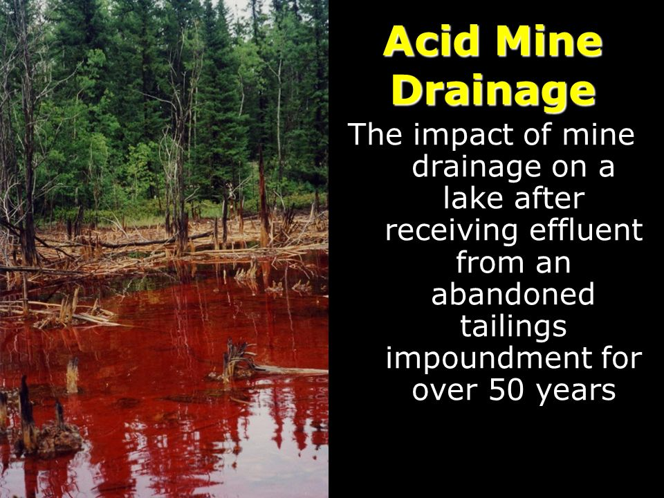 Acid Mine Drainage The impact of mine drainage on a lake after receiving effluent from an abandoned tailings impoundment for over 50 years