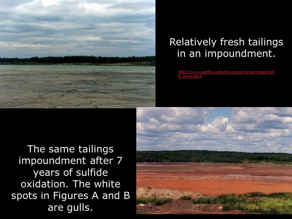 Relatively fresh tailings in an impoundment. The same tailings impoundment after 7 years of sulfide oxidation. The white spots in Figures A and B are