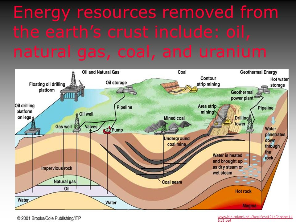 Energy resources removed from the earths crust include: oil, natural gas, coal, and uranium www.bio.miami.edu/beck/esc101/Chapter14 &15.ppt
