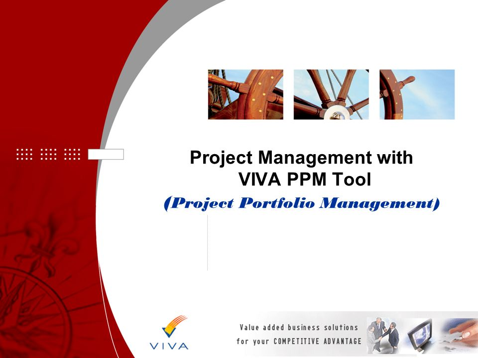 Project Management with VIVA PPM Tool ( Project Portfolio Management)