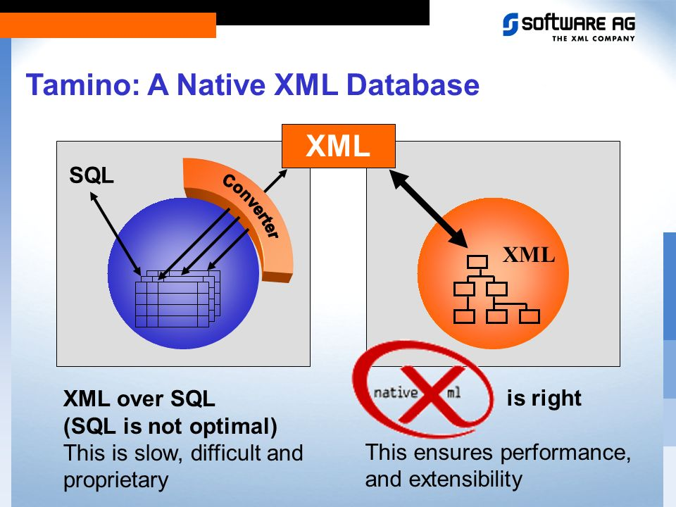 Tamino... is the Information Server for Electronic Business is the first native XML DBMS can store and manage any data attaches directly to the Intern