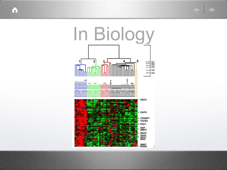 In Biology