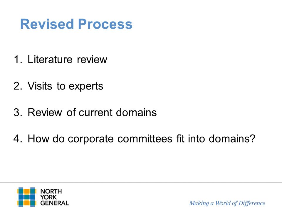 Revised Process 1.Literature review 2.Visits to experts 3.Review of current domains 4.How do corporate committees fit into domains?
