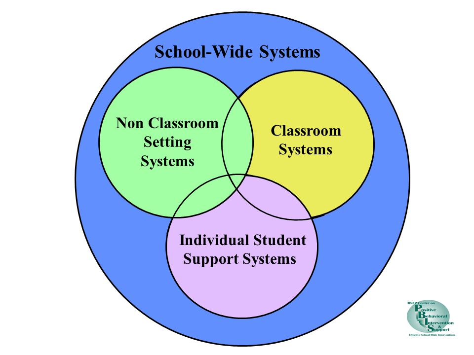 School-Wide Systems Non Classroom Setting Systems Classroom Systems Individual Student Support Systems