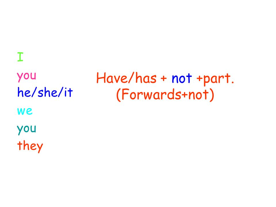 Have/has + not +part. (Forwards+not) I you he/she/it we you they