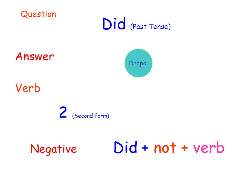Did (Past Tense) Answer Verb 2 (Second form) Drops Question Negative Did + not + verb