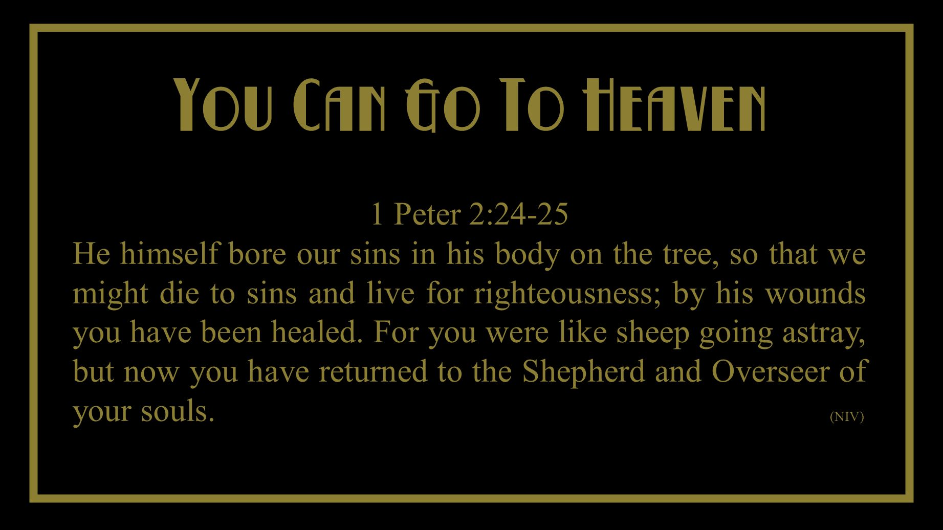 You Cant Take It With You You Can Go To Heaven 1 Peter 2:24-25 He himself bore our sins in his body on the tree, so that we might die to sins and live for righteousness; by his wounds you have been healed.