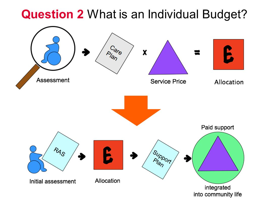 Question 2 What is an Individual Budget
