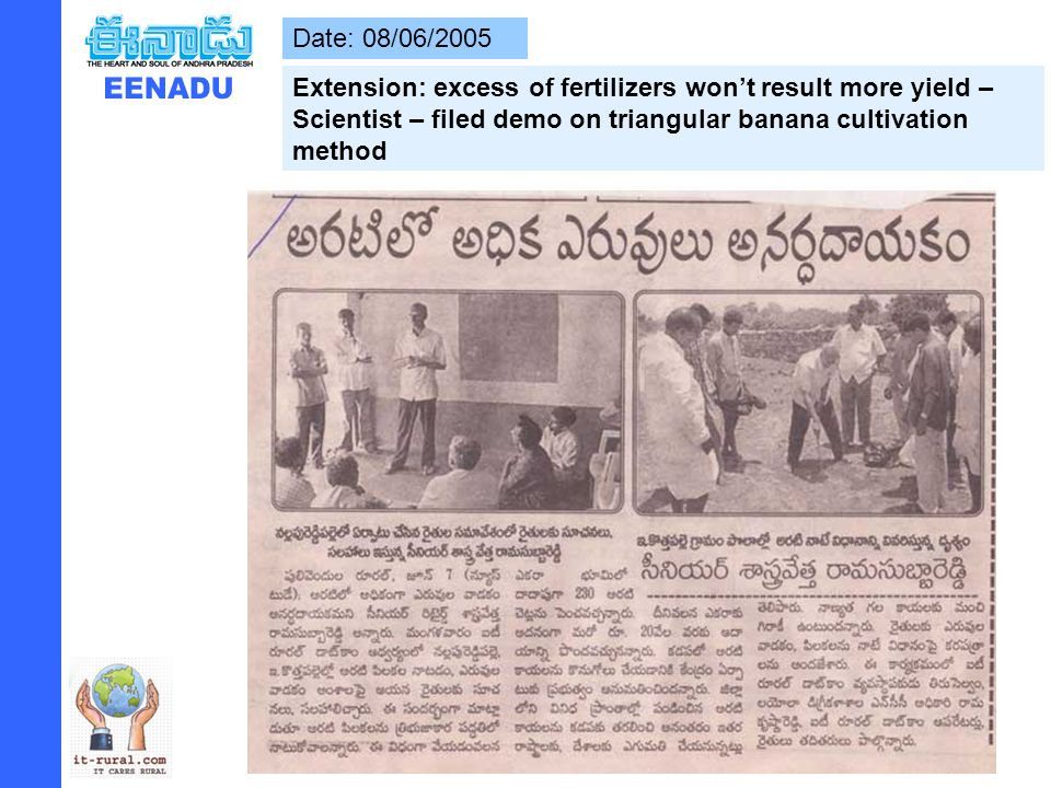 Date: 08/06/2005 Extension: excess of fertilizers wont result more yield – Scientist – filed demo on triangular banana cultivation method