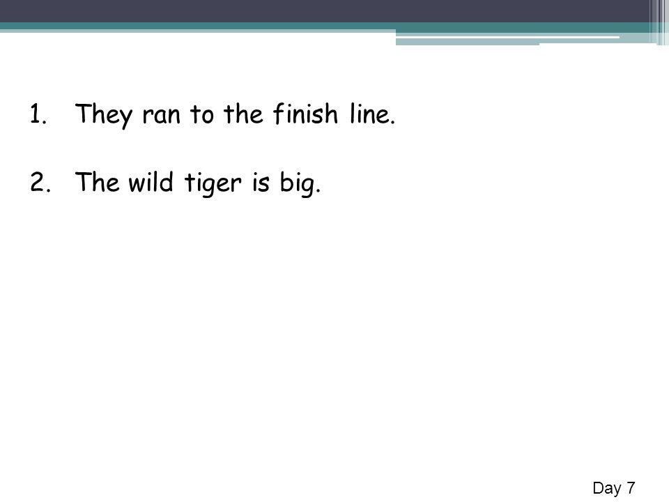 1.They ran to the finish line. 2.The wild tiger is big. Day 7