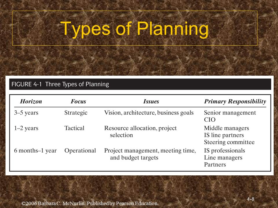 ©2006 Barbara C. McNurlin. Published by Pearson Education. 4-8 Types of Planning