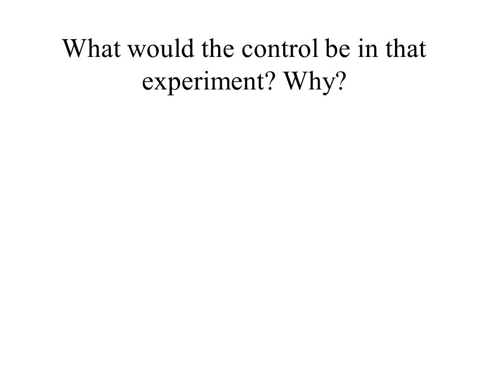 What would the control be in that experiment? Why?
