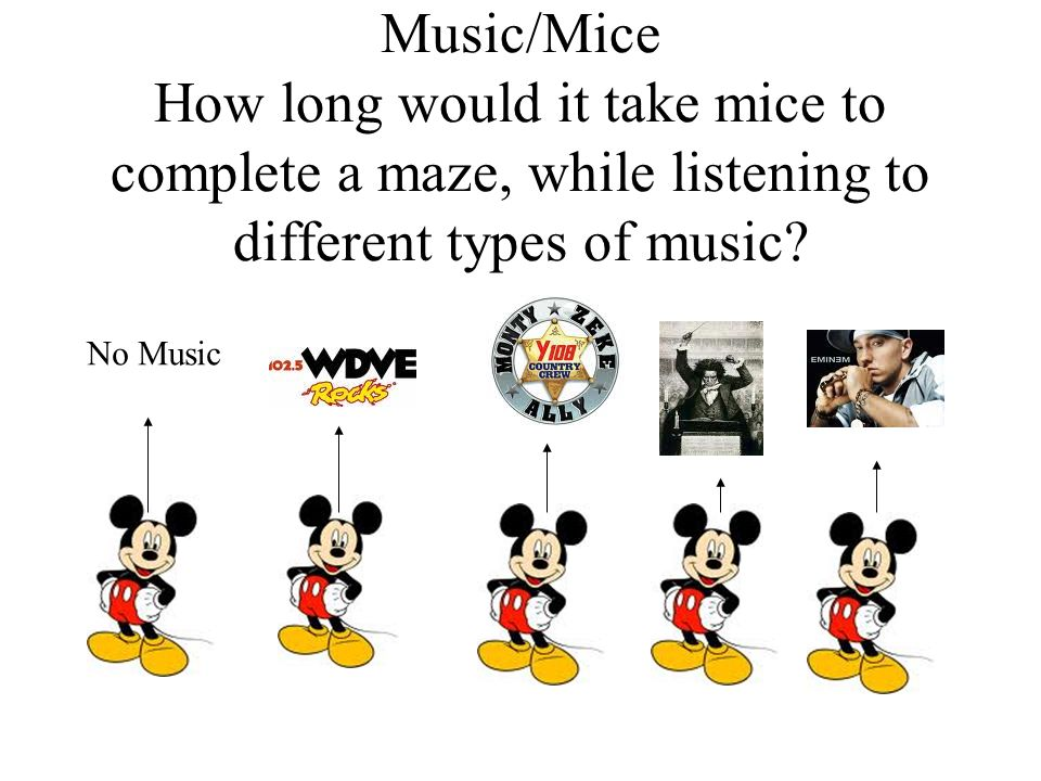 Music/Mice How long would it take mice to complete a maze, while listening to different types of music.