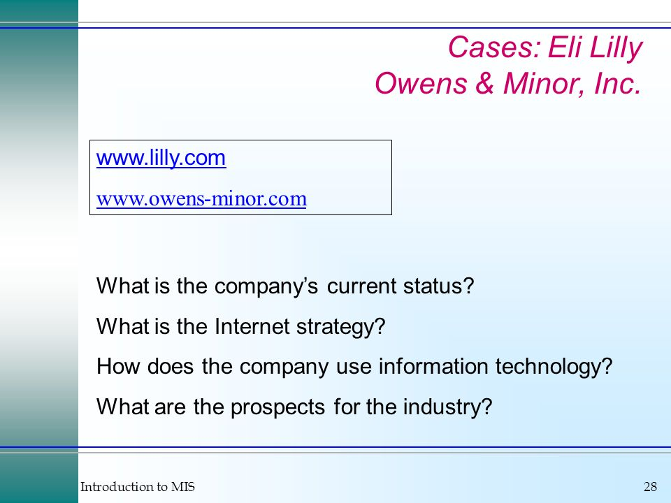 Introduction to MIS28 What is the companys current status? What is the Internet strategy? How does the company use information technology? What are th