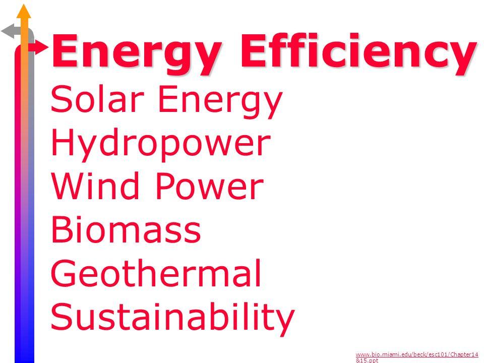 Energy Efficiency Solar Energy Hydropower Wind Power Biomass Geothermal Sustainability