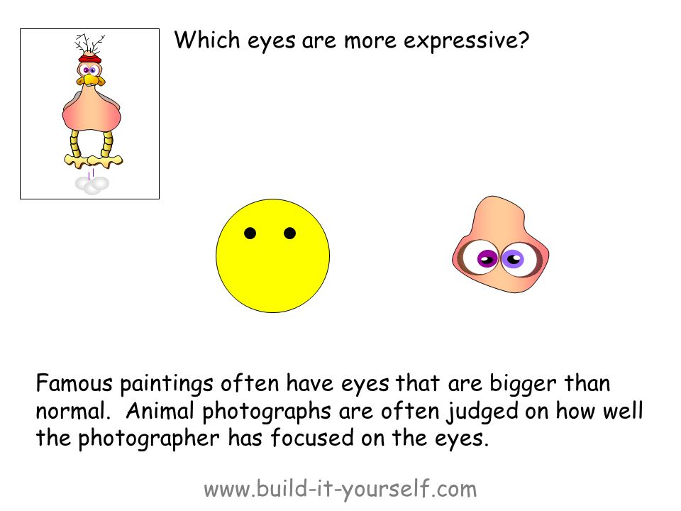 www.build-it-yourself.com Which eyes are more expressive? Famous paintings often have eyes that are bigger than normal. Animal photographs are often j